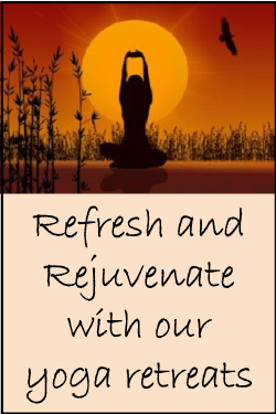 Refresh and Rejuvenate With Our Yoga Retreats
